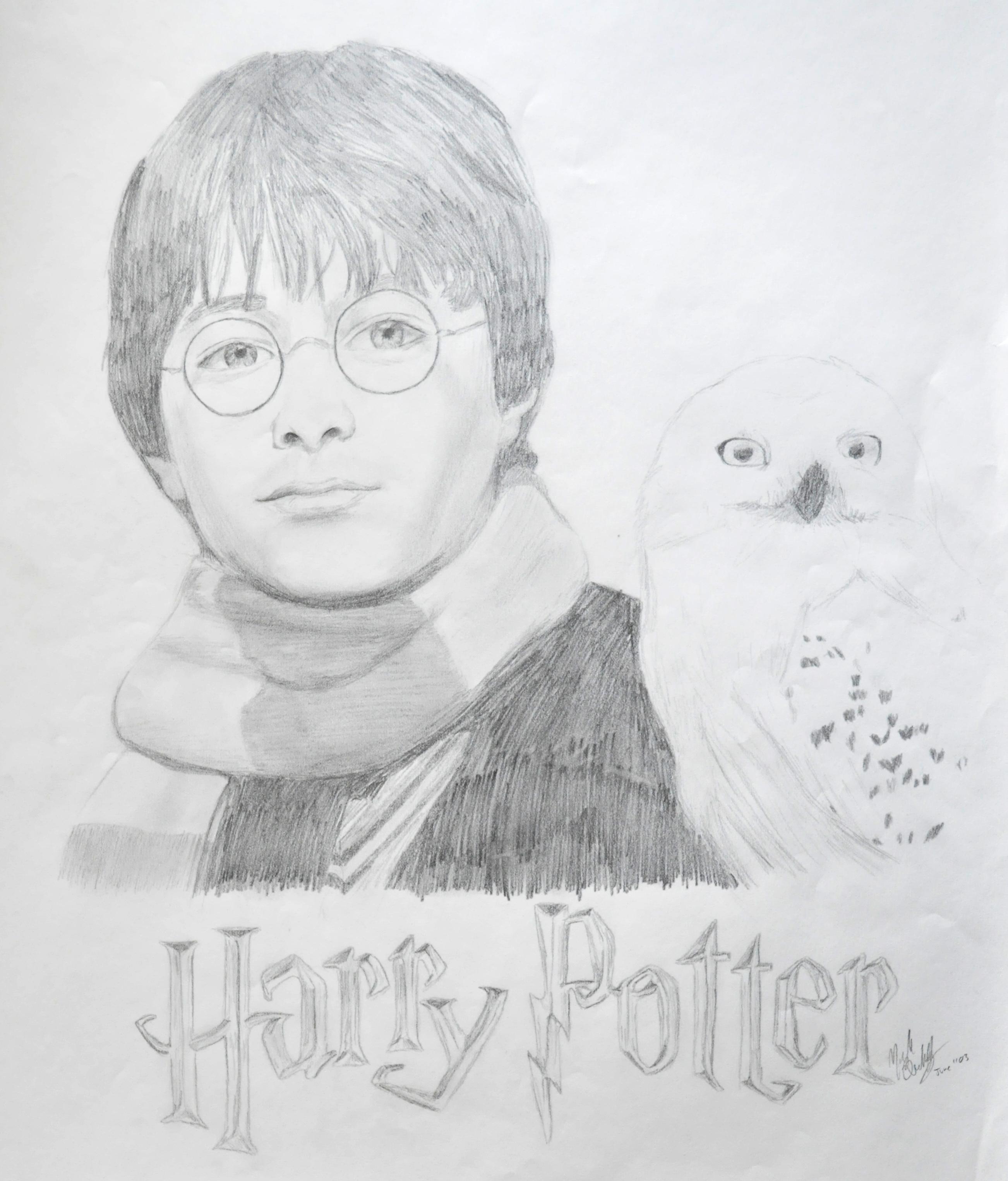 Harry potter evolution